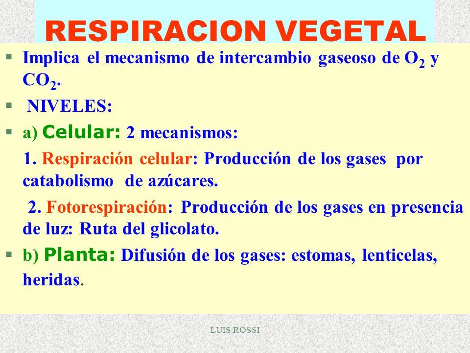 RESPIRACION VEGETAL Implica el mecanismo de intercambio gaseoso de O2 y CO2. NIVELES: a) Celular: 2 mecanismos: