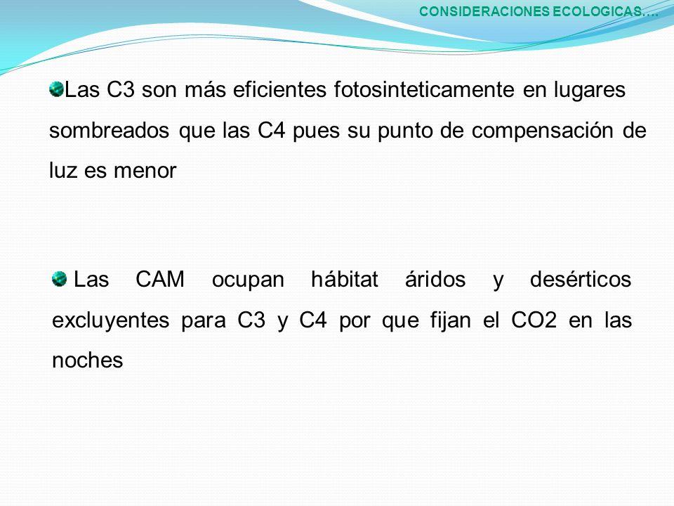CONSIDERACIONES ECOLOGICAS….