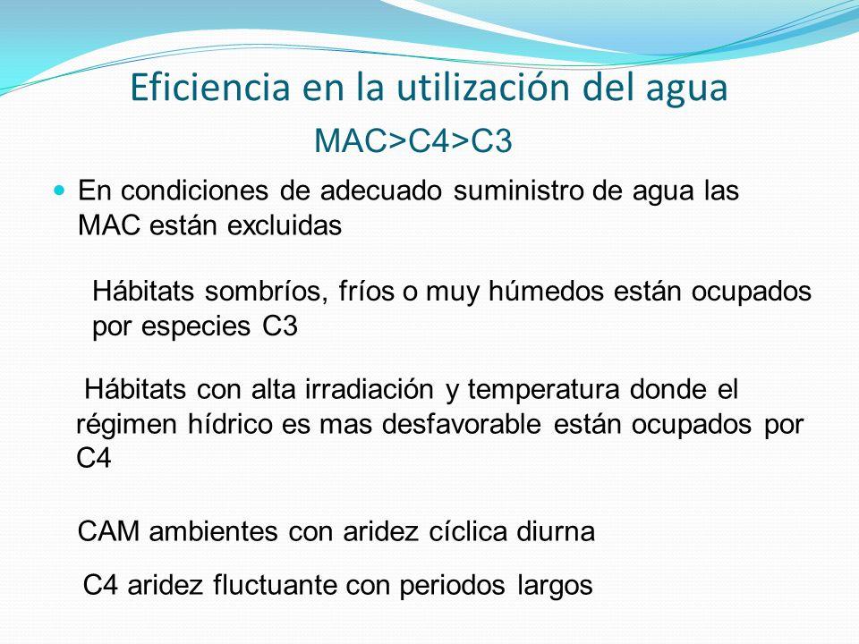 Eficiencia en la utilización del agua
