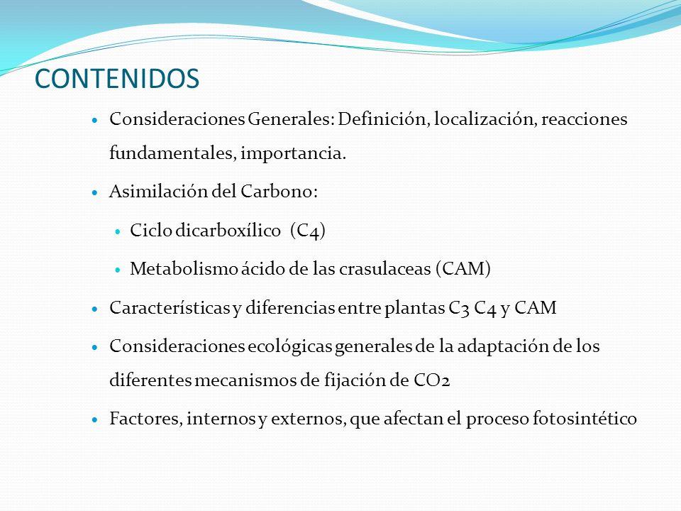 CONTENIDOS Consideraciones Generales: Definición, localización, reacciones fundamentales, importancia.