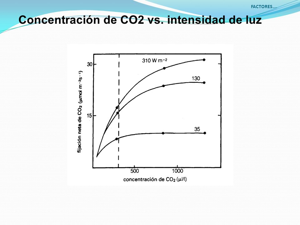 Concentración de CO2 vs. intensidad de luz