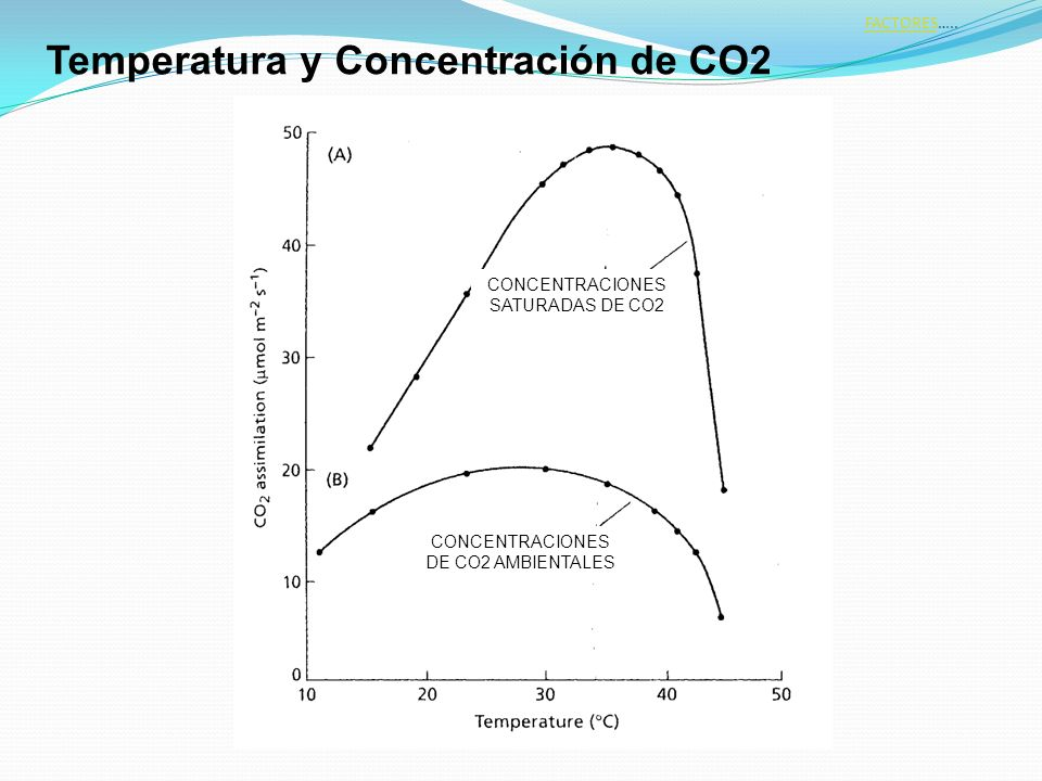 Temperatura y Concentración de CO2
