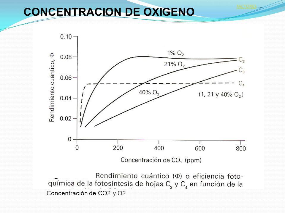 CONCENTRACION DE OXIGENO