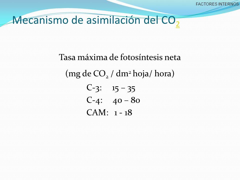 Mecanismo de asimilación del CO2