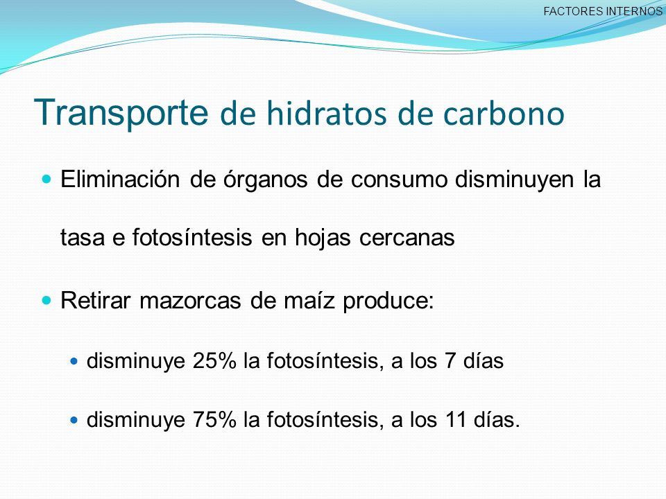 Transporte de hidratos de carbono