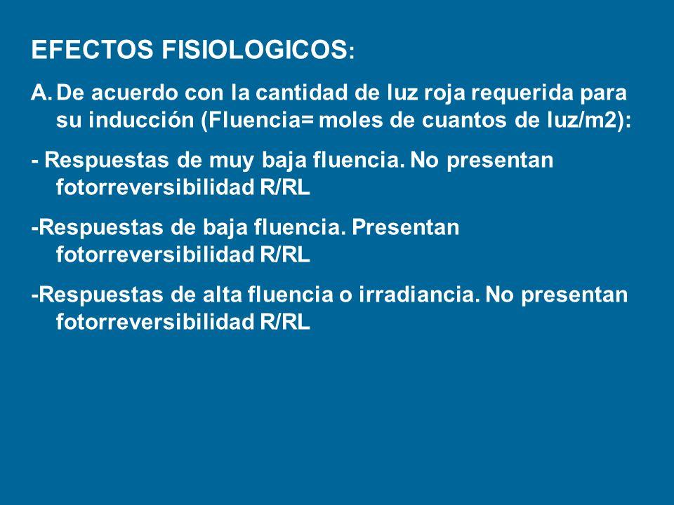 EFECTOS FISIOLOGICOS: