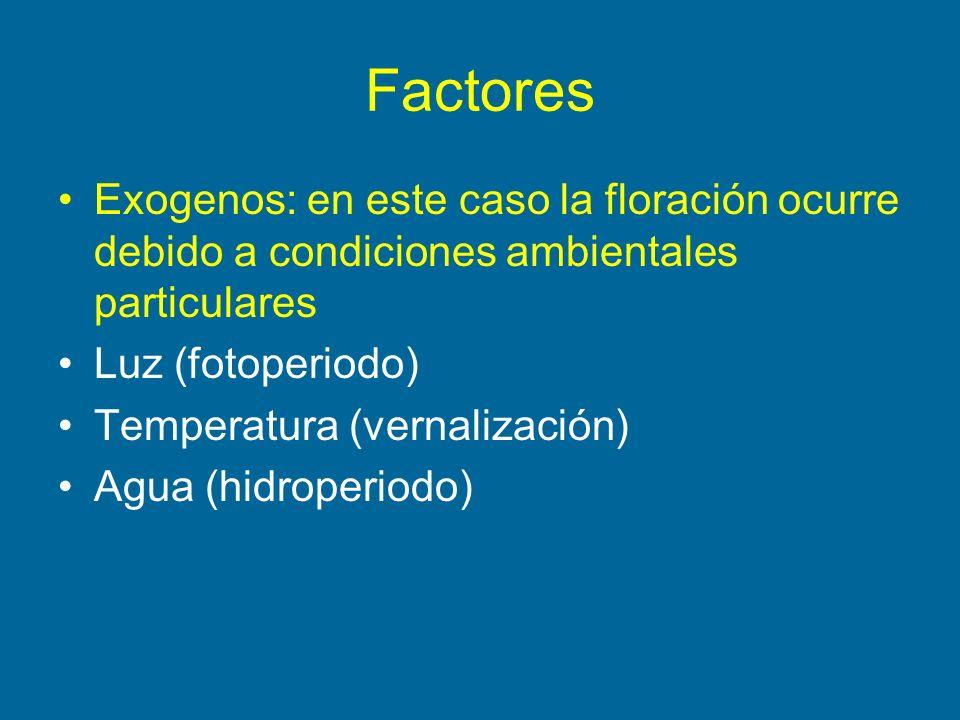 FactoresExogenos: en este caso la floración ocurre debido a condiciones ambientales particulares. Luz (fotoperiodo)