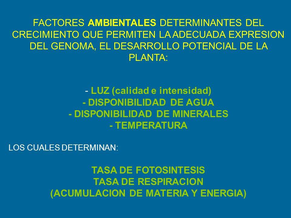 - LUZ (calidad e intensidad) - DISPONIBILIDAD DE AGUA