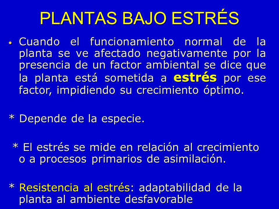 PLANTAS BAJO ESTRÉS