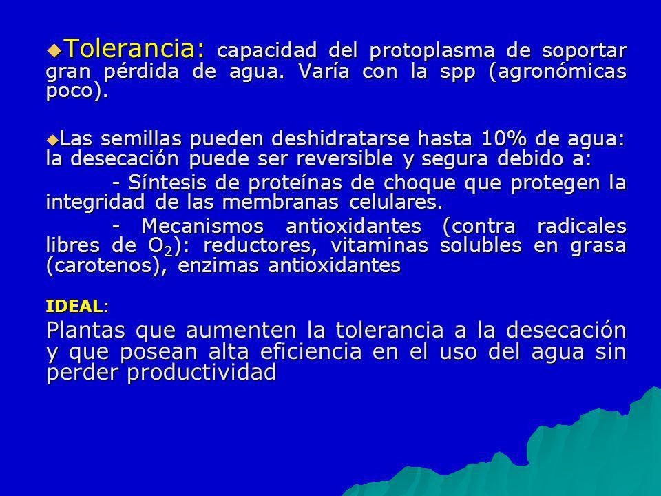 Tolerancia: capacidad del protoplasma de soportar gran pérdida de agua