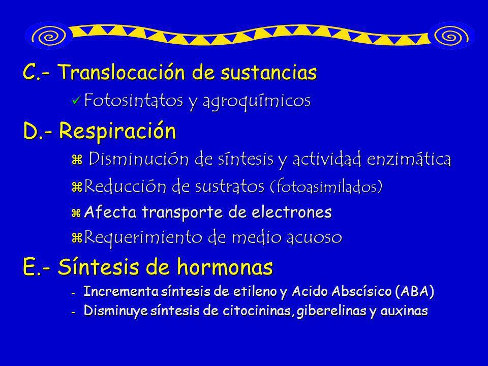 C.- Translocación de sustancias D.- Respiración