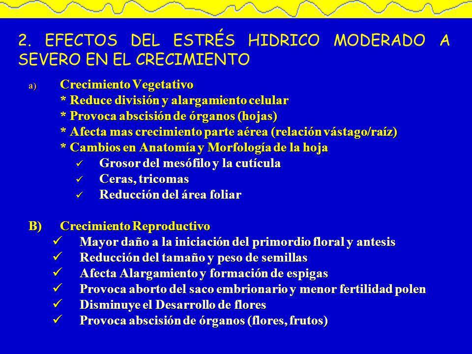 2. EFECTOS DEL ESTRÉS HIDRICO MODERADO A SEVERO EN EL CRECIMIENTO