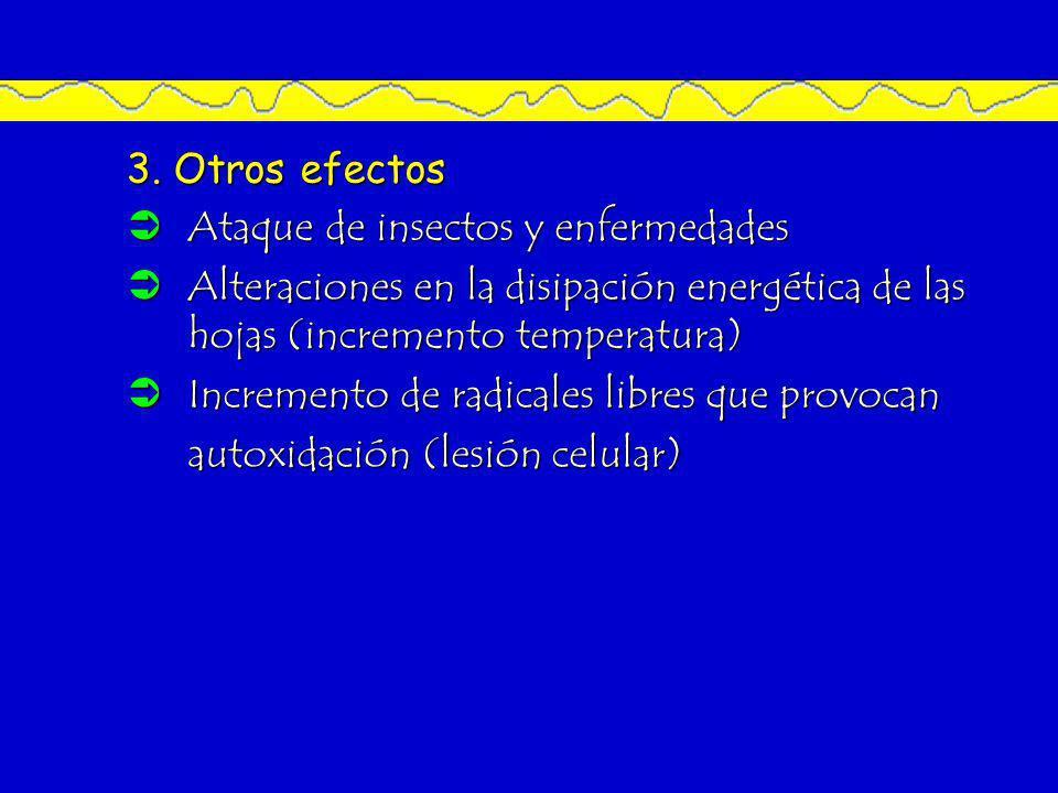 3. Otros efectos Ataque de insectos y enfermedades. Alteraciones en la disipación energética de las hojas (incremento temperatura)
