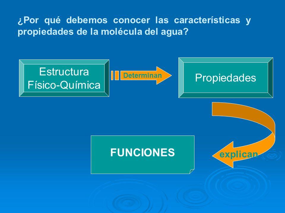Estructura Propiedades Físico-Química FUNCIONES