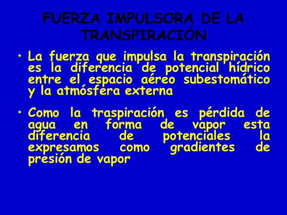 FUERZA IMPULSORA DE LA TRANSPIRACIÓN