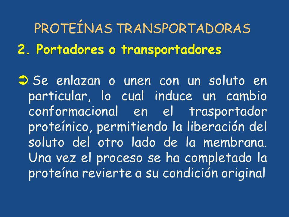 PROTEÍNAS TRANSPORTADORAS