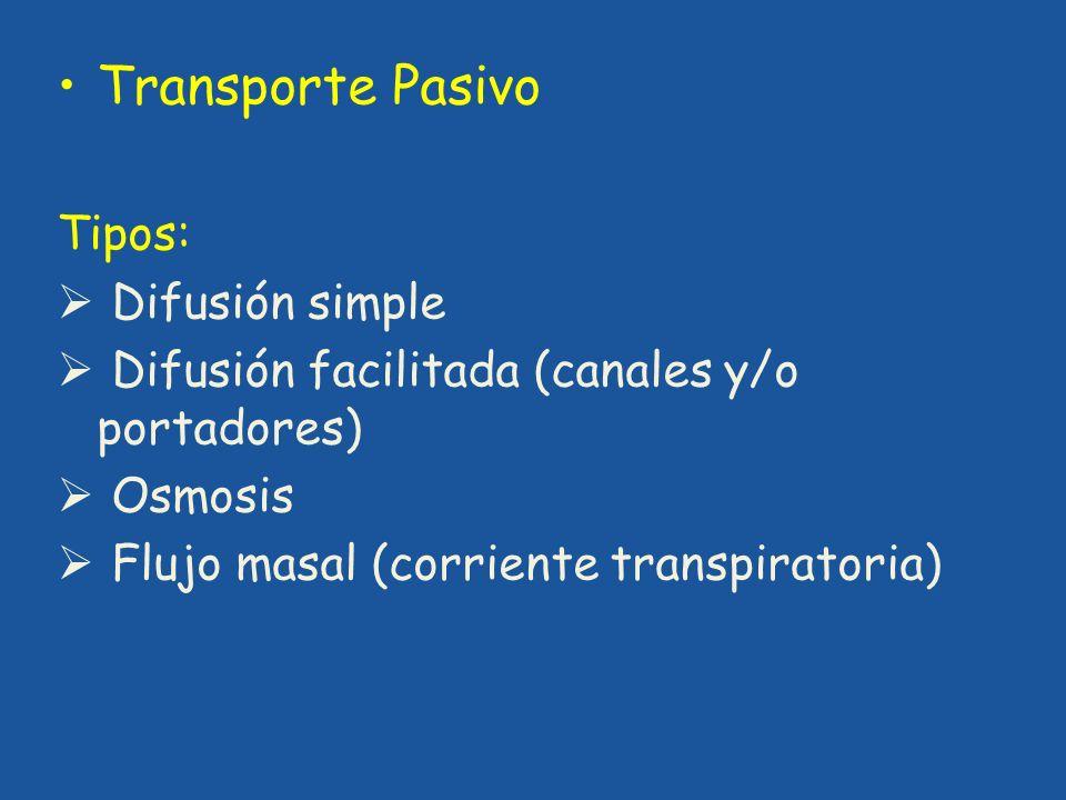 Transporte Pasivo Tipos: Difusión simple