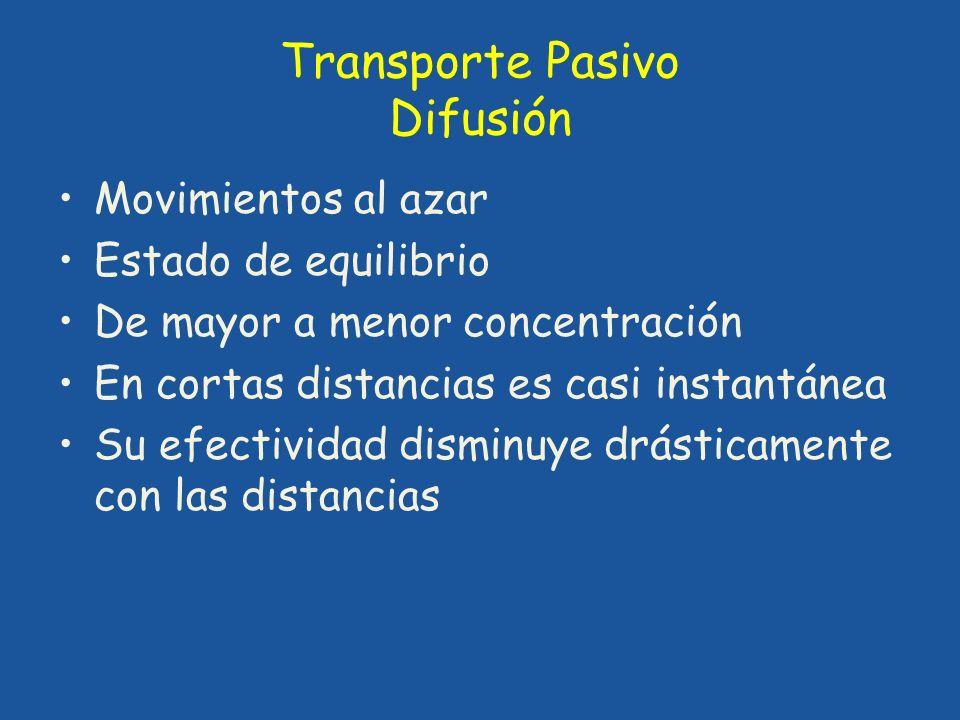 Transporte Pasivo Difusión