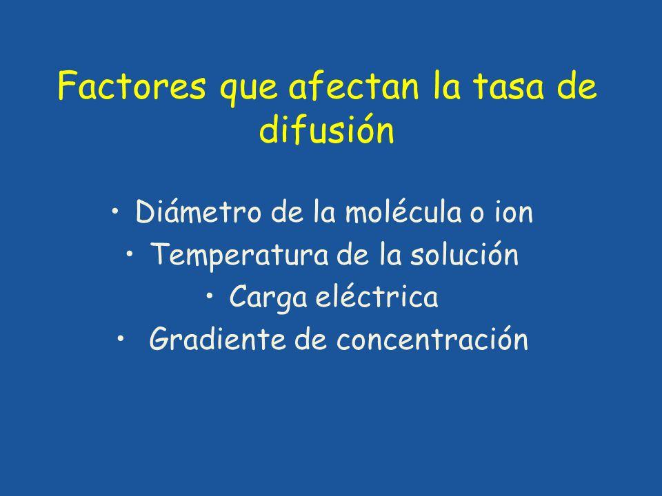 Factores que afectan la tasa de difusión