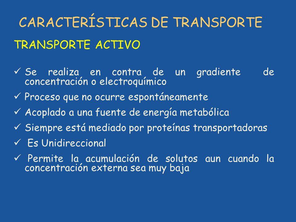 CARACTERÍSTICAS DE TRANSPORTE