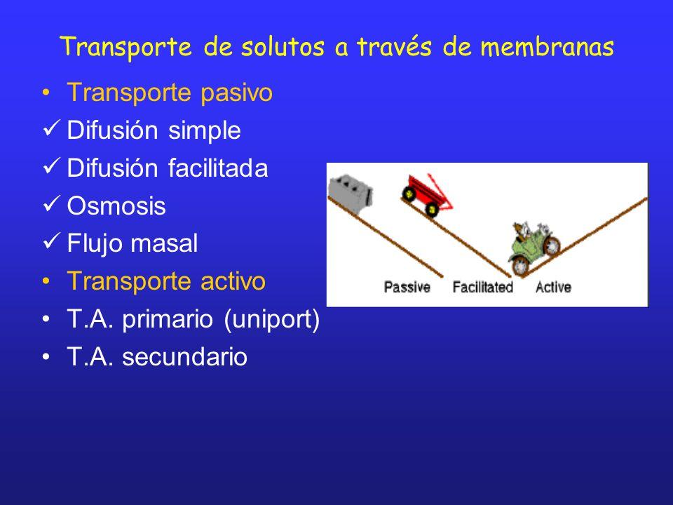 Transporte de solutos a través de membranas