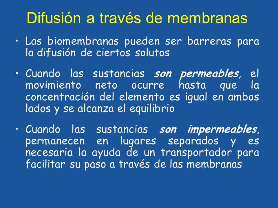 Difusión a través de membranas