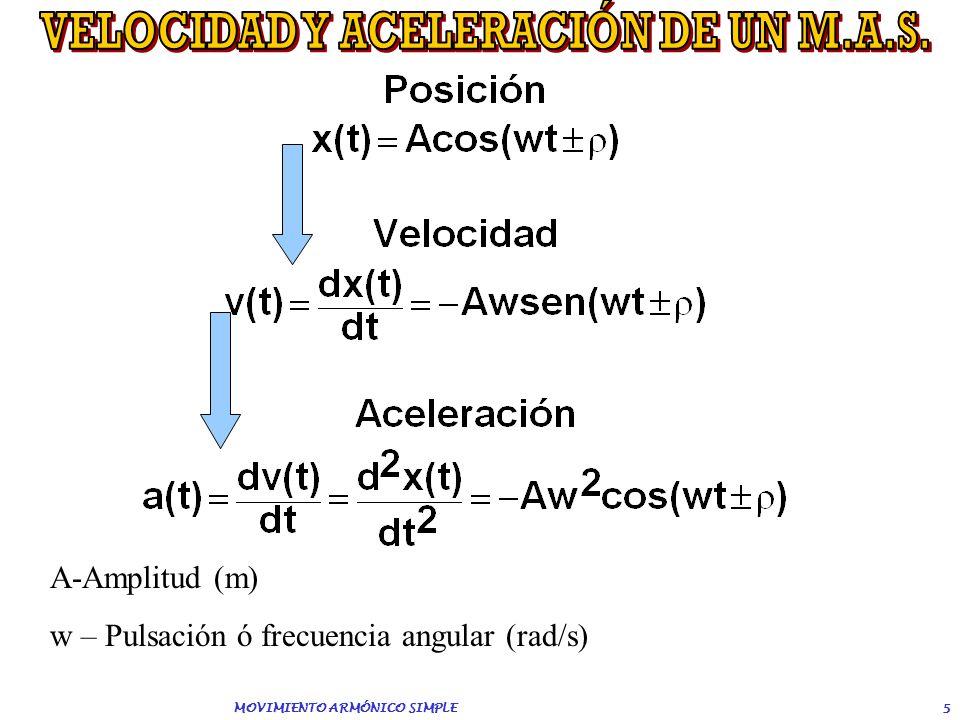 VELOCIDAD Y ACELERACIÓN DE UN M.A.S. MOVIMIENTO ARMÓNICO SIMPLE