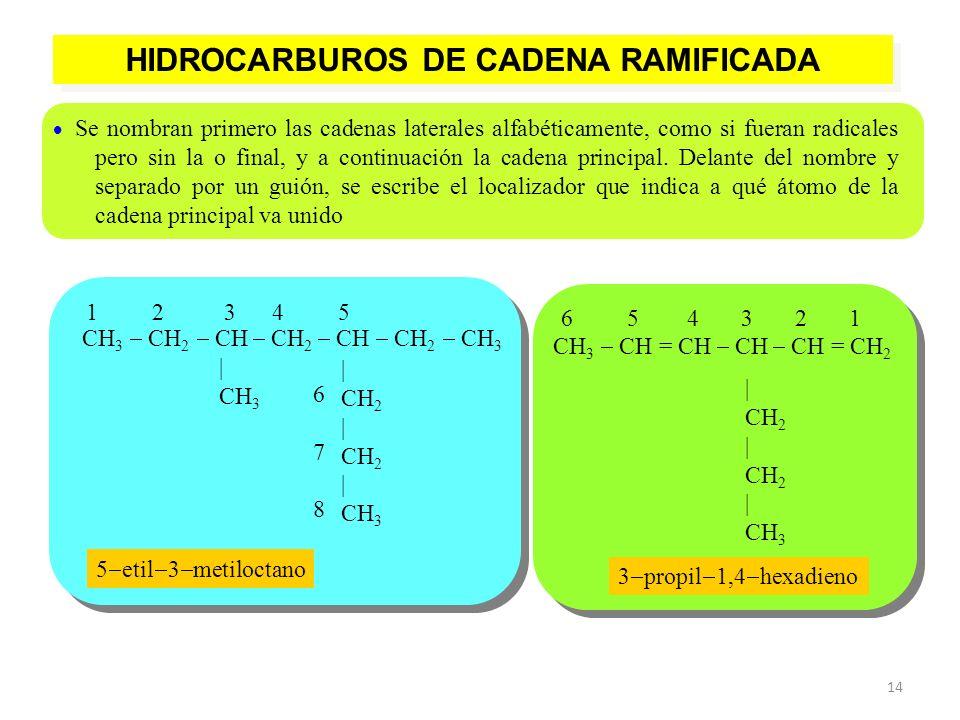 HIDROCARBUROS DE CADENA RAMIFICADA