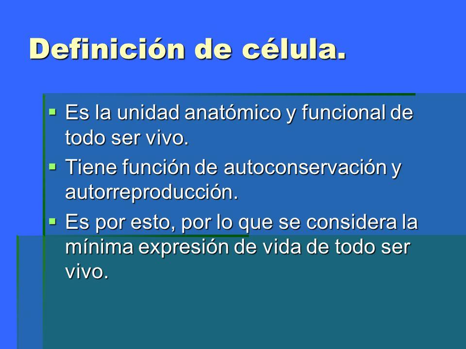 Definición de célula.Es la unidad anatómico y funcional de todo ser vivo. Tiene función de autoconservación y autorreproducción.
