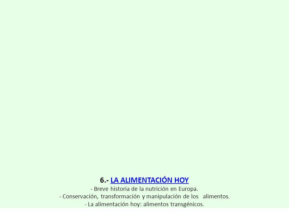 6.- LA ALIMENTACIÓN HOY