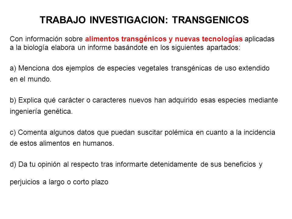 TRABAJO INVESTIGACION: TRANSGENICOS