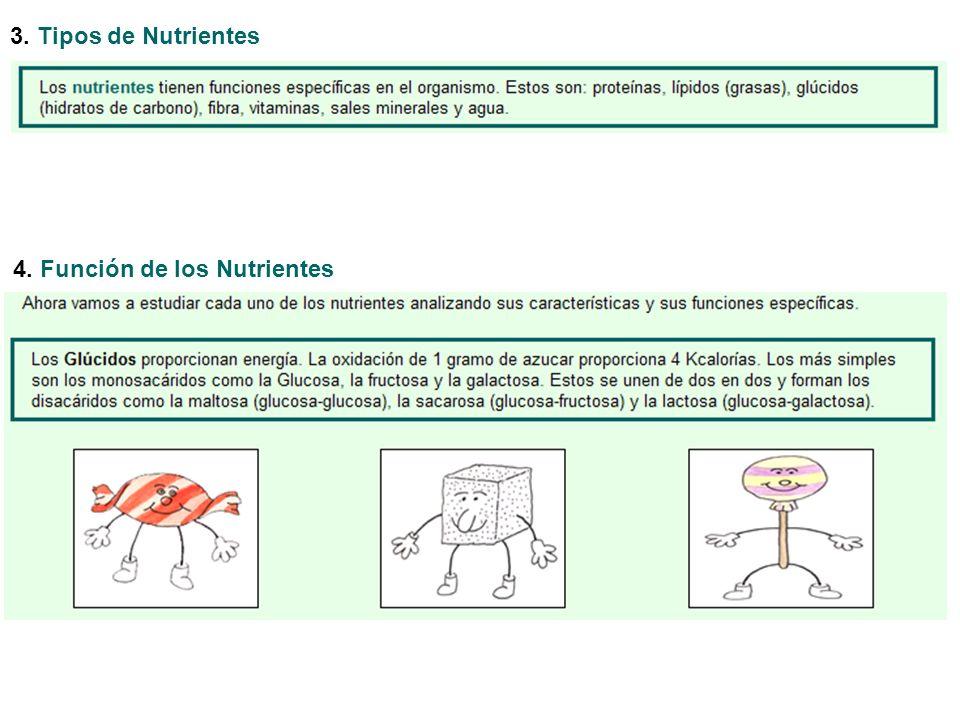 3. Tipos de Nutrientes 4. Función de los Nutrientes