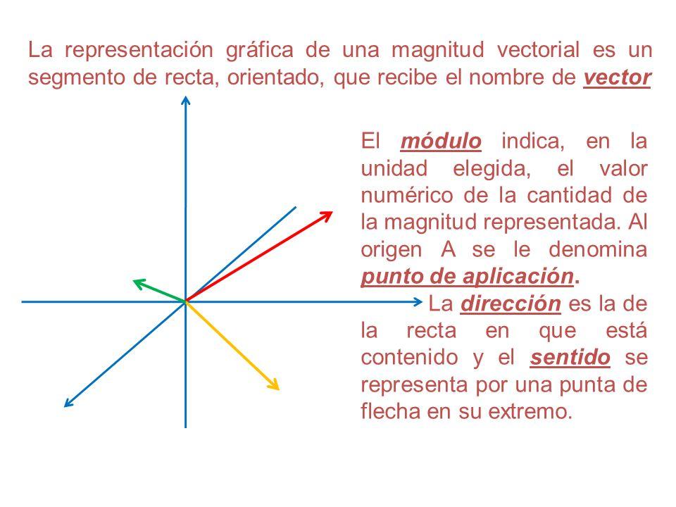 La representación gráfica de una magnitud vectorial es un segmento de recta, orientado, que recibe el nombre de vector