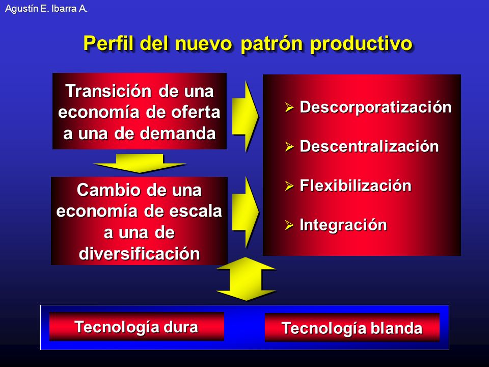 Perfil del nuevo patrón productivo