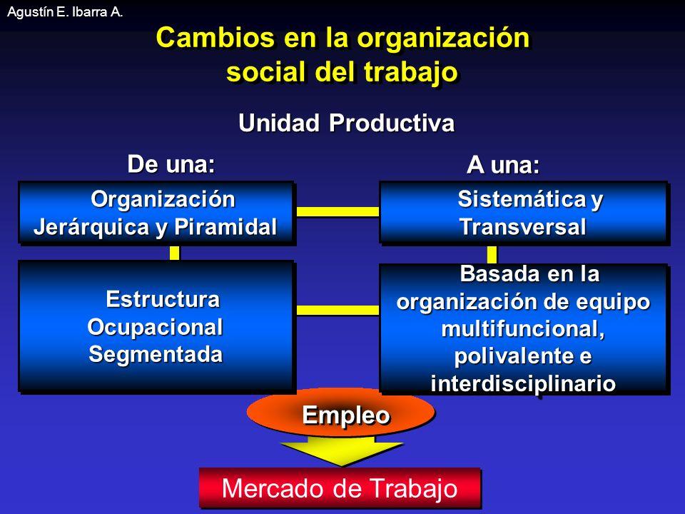 Cambios en la organización social del trabajo