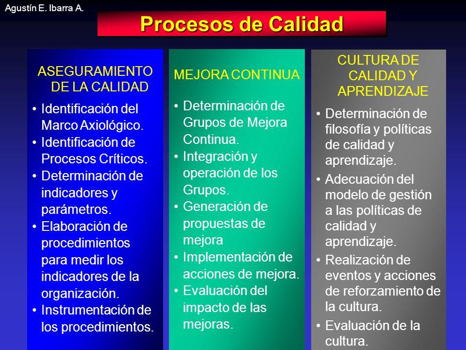 Procesos de Calidad CULTURA DE CALIDAD Y APRENDIZAJE