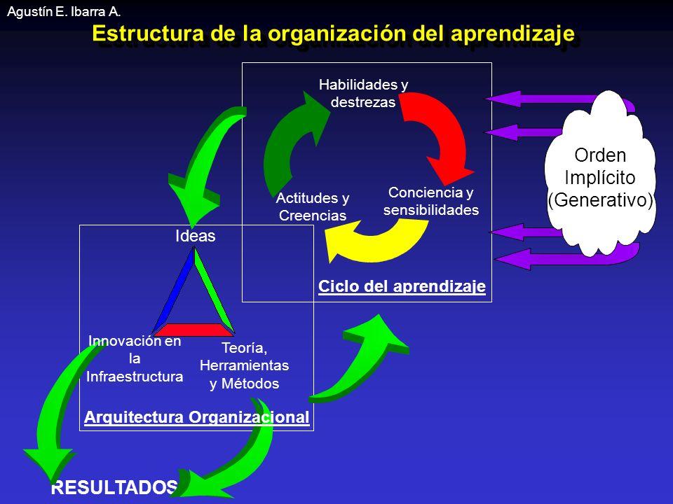 Estructura de la organización del aprendizaje