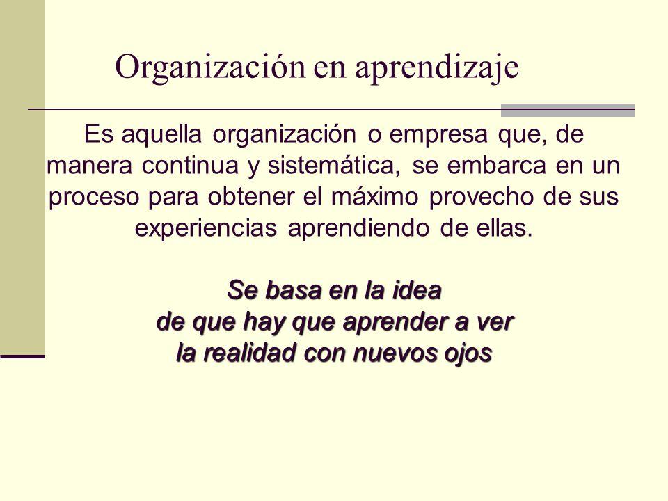 Organización en aprendizaje