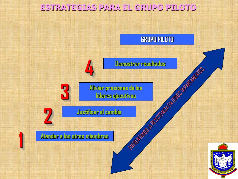 ESTRATEGIAS PARA EL GRUPO PILOTO