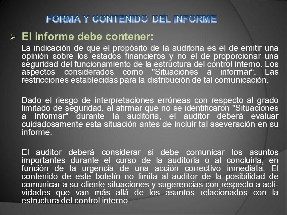 FORMA Y CONTENIDO DEL INFORME