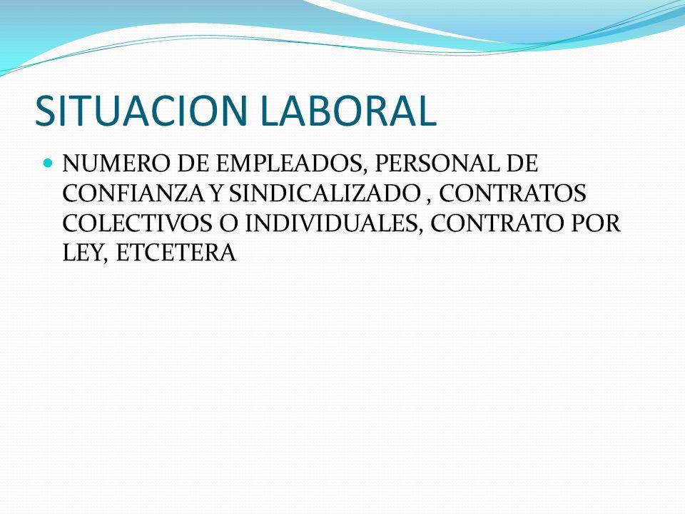 SITUACION LABORAL NUMERO DE EMPLEADOS, PERSONAL DE CONFIANZA Y SINDICALIZADO , CONTRATOS COLECTIVOS O INDIVIDUALES, CONTRATO POR LEY, ETCETERA.