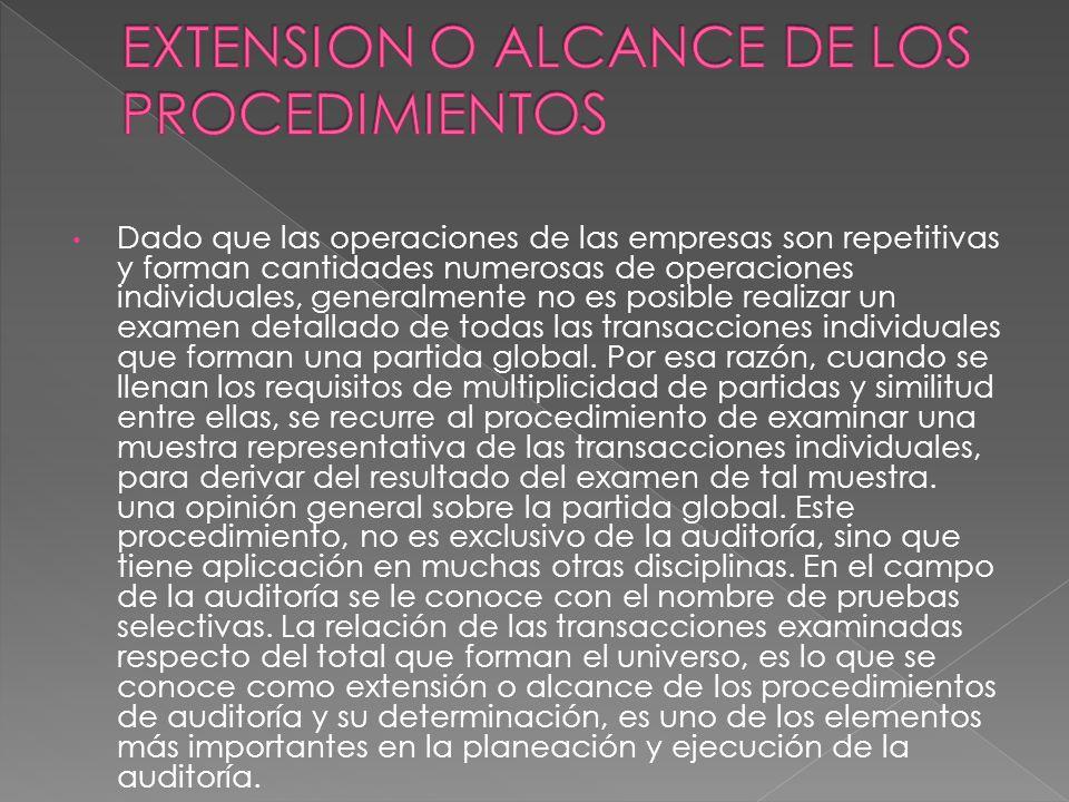 EXTENSION O ALCANCE DE LOS PROCEDIMIENTOS