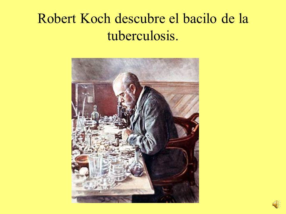 Robert Koch descubre el bacilo de la tuberculosis.