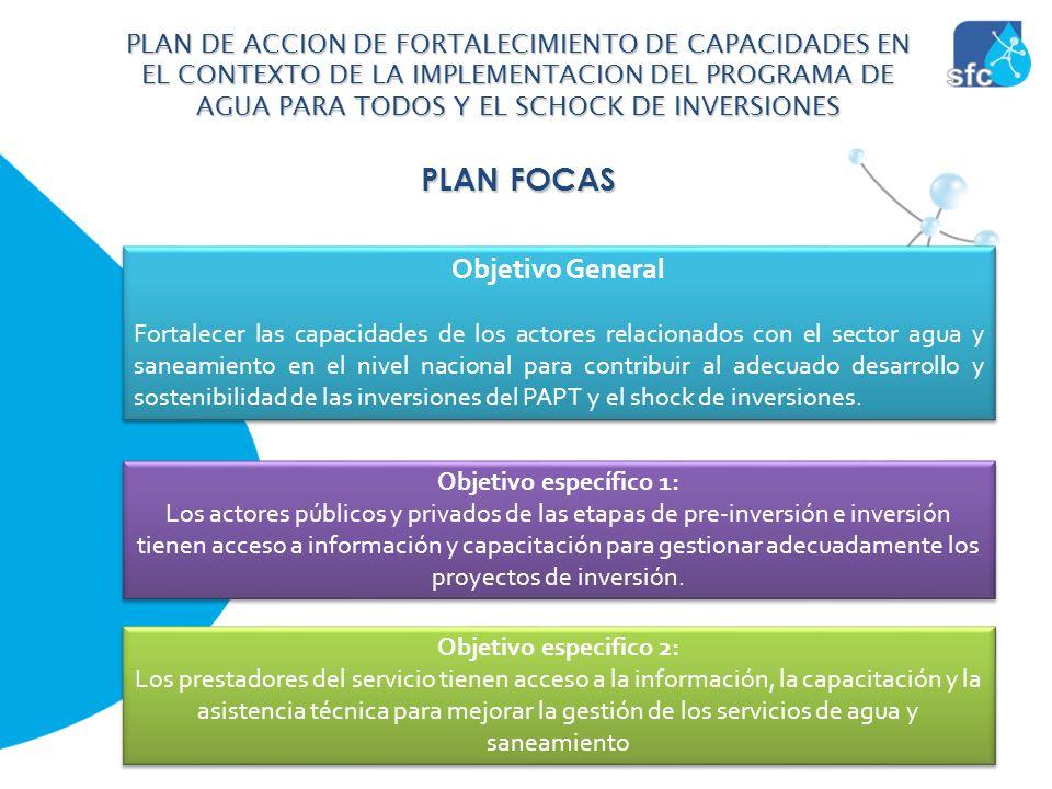 PLAN FOCAS Objetivo General