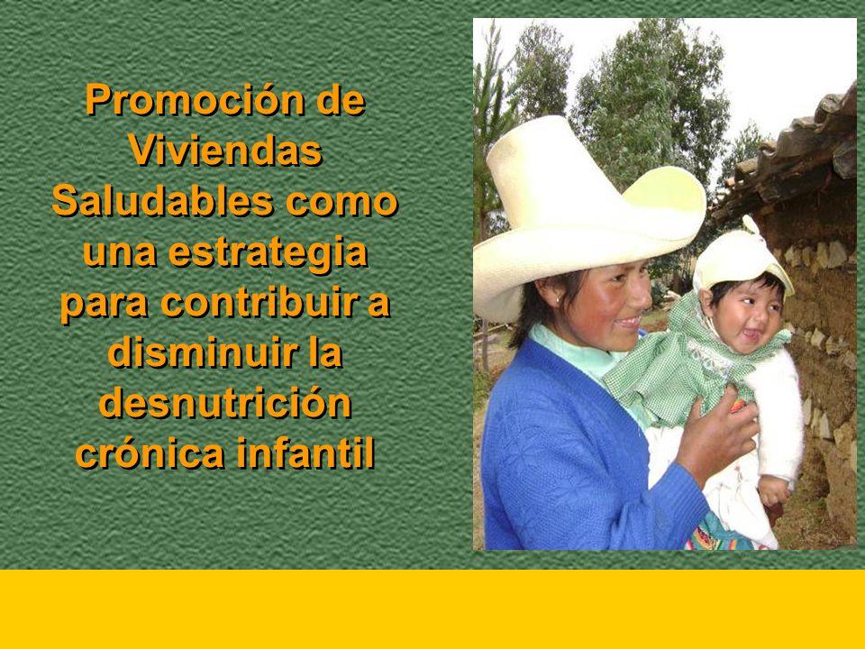 Promoción de Viviendas Saludables como una estrategia para contribuir a disminuir la desnutrición crónica infantil