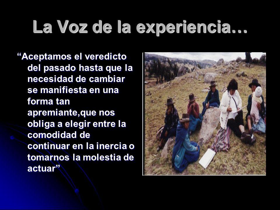 La Voz de la experiencia…