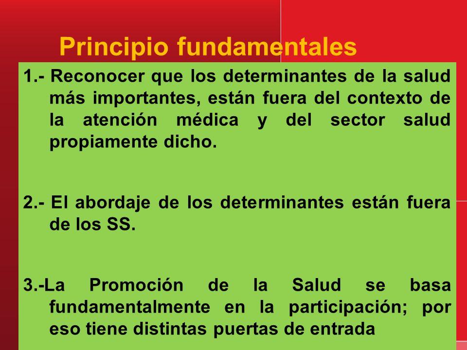 Principio fundamentales