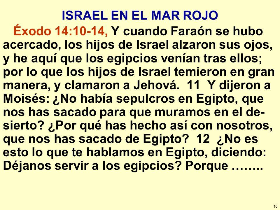ISRAEL EN EL MAR ROJO