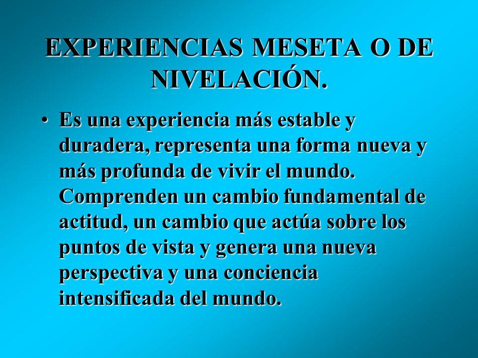 EXPERIENCIAS MESETA O DE NIVELACIÓN.