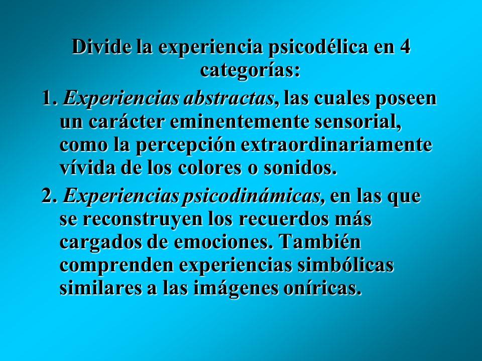 Divide la experiencia psicodélica en 4 categorías: